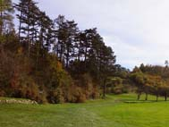 Golf Club d'Avrainville